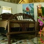 Hotel Pictures: Macaw Bank Jungle Lodge, San Ignacio