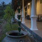 Explore Sinharaja Rain Forest Tour Camp,  Dombagoda