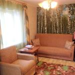 Apartment on Dekabristov 79a, Noginsk