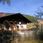 Hotelbilder: Gasthof Alpl, Sirnitz