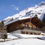 Hotel Pictures: Ferienwohnung Chalet Bergblume, Kandersteg