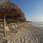 Playa Paradise,  Playa del Carmen