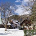 Zdjęcia hotelu: Feriengut Moarhof, Palfau