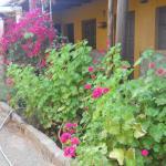 Hotellbilder: Las Jarillas de Guandacol, Guandacol