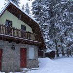 Fotos de l'hotel: Vikendica Relax, Vlasic