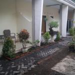 Puri Amalia Guesthouse,  Banyuwangi