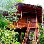Sigiri Charuka Resort,  Sigiriya