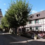 Hotel Pictures: Appartement Locations du Massif, Bergheim