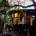 Hotel Pictures: Reserva los Bollenes, Constitución