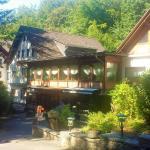 Hotel Pictures: Siegerland-Hotel Haus im Walde, Freudenberg