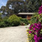 Hotel Pictures: Helgrah Cottage, Healesville