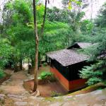 Soochipara Resort,  Meppādi