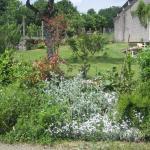 Hotel Pictures: Maison Papillon, Cherveux