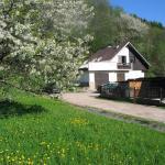 Vakantiehuis Reuzengebergte,  Horní Lánov