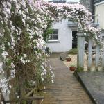 The Flat,  Aberystwyth