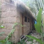Straycats, Sihanoukville