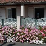 Hotel Pictures: L'insulaire Studios, Saint-Denis-d'Oléron