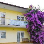 Apartment in Pula 13, Pula