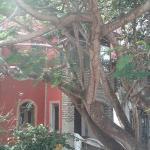 Hotel Pictures: Anacardium Vihara, Parnamirim