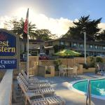 (4.5/5)   Best Western Park Crest Inn - Monterey  reviews