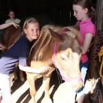 Pony-und Ferienhof Gut Habbecke, Eslohe