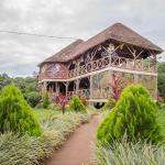 Roots Retreat and Camping Resort, Sisa