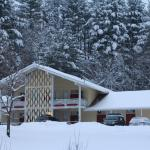 Hotel Pictures: Snowdon Chalet, Londonderry