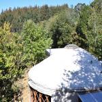 Hotel Pictures: Paihuen Yurts & turismo, Lechagua