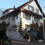 Hotel Pictures: Bergstrasse Homestay, Gossau