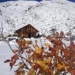 La Araucaria, Potrerillos
