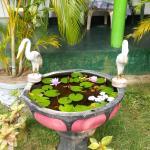Village Guest Sigiriya, Sigiriya