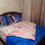 Apartment Ushakovskaya 3/1,  Irkutsk