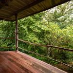 Hotel Pictures: Toucanet Lodge, Copey