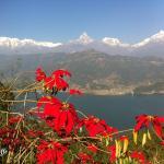 Peace Dragon Lodge, Pokhara