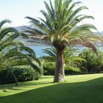 Hotel Pictures: Marina di fiori, Propriano