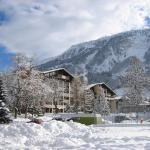 Hotel Pictures: Disentiserhof C502, Disentis