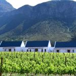 The Terraces @ Chambray Estate, Franschhoek