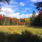 Hotel Pictures: Madawaska Lodge, Madawaska