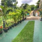 Yes Paradise, Kandy