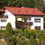 Hotel Pictures: Ferienwohnung Patry, Beerfelden