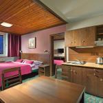 Hotel Pictures: Hotel Tetřeví Boudy, Cerny Dul