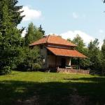 Hotellbilder: Holiday Home Čarobna Kućica, Pale