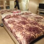 Kinshicho Rental Room PARIS,  Tokyo