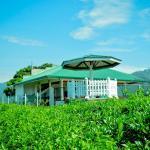 Cool Mount Resort, Ella