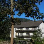 Hotel Pictures: Ferienwohnung Tannwald, Bad Herrenalb