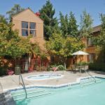 Grove 1807, Sunnyvale