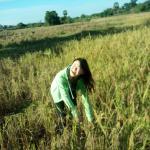 Sok Phen Homestay, Siem Reap