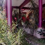 Casa del Cazador,  Bocas Town