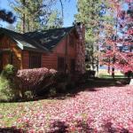 028 Lakeside Secret Home,  Big Bear Lake