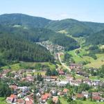 Hotel Pictures: Haus-Schneider-Ferienwohnung-Stueble, Gutach